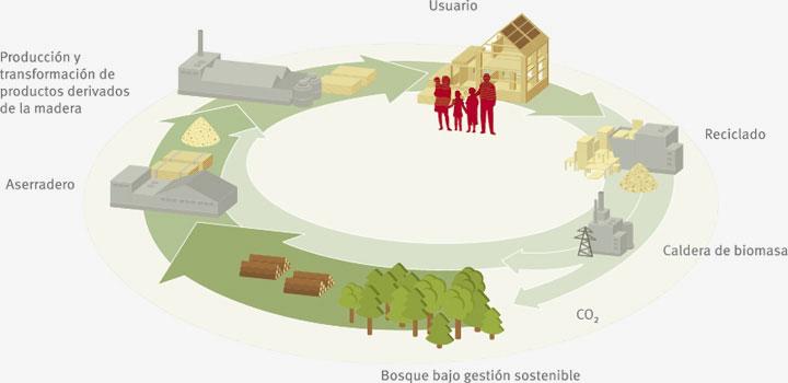 Imagen del proceso de reciclado de la madera por Egger